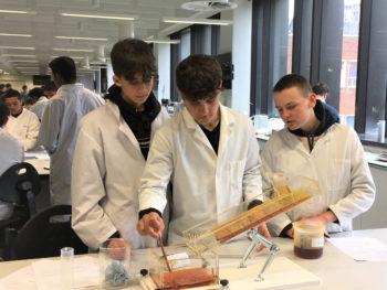 students lava experiment